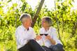 canvas print picture - Senioren sitzen im Weinberg trinken Wein, Mann und Frau prosten sich zu
