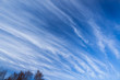 canvas print picture - Long cirrus clouds skyscape
