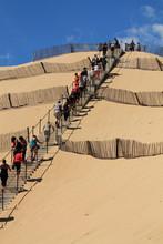 La Montée Sur La Dune De Pilat / Pyla