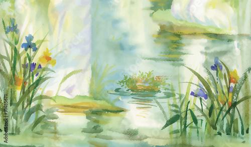 Photo sur Toile Olive Summer pond watercolor illustration vector