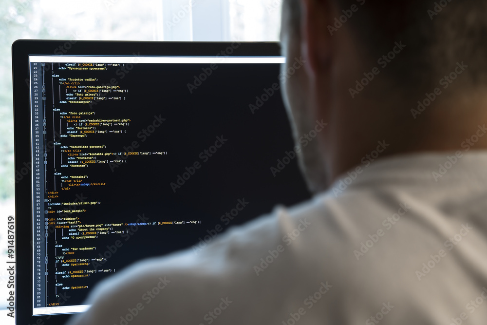 Fototapeta programmer from behind and programming code on computer monitor
