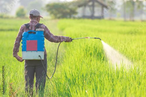 Cuadros en Lienzo spraying pesticide