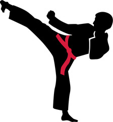 FototapetaKarate kick with red belt