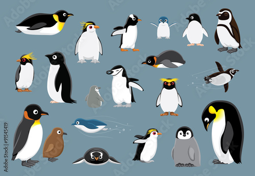 Cuadros en Lienzo Various Penguins Cartoon Vector Illustration