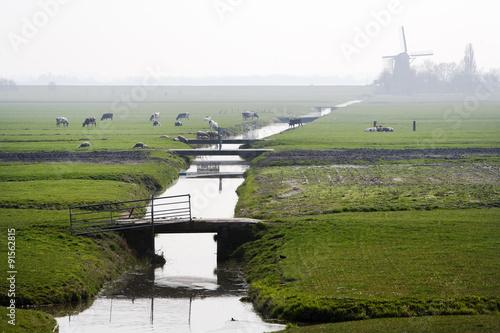 Typical Dutch foggy polder landscape Wallpaper Mural