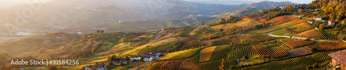 Foto Panoramic view of vineyards of Piedmont in autumn