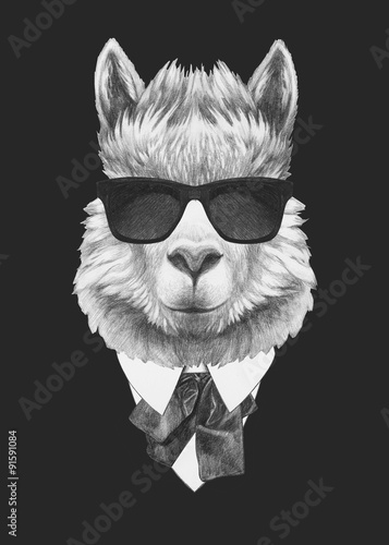 Portrait of Lama in suit. Hand drawn illustration.