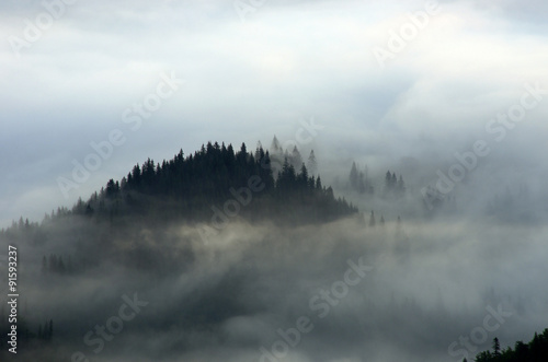 Foto op Aluminium Ochtendstond met mist Amazing mountain landscape with dense fog. Carpathian Mountains