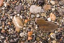 Common Rocks Rivers Edge Alask...
