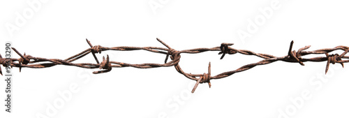 Rusted barbed wire isolated on white background Canvas