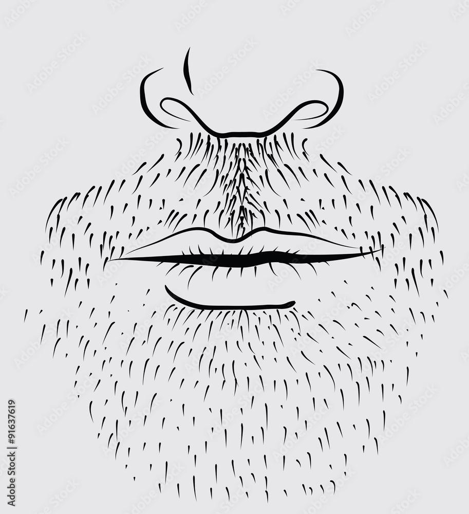 Fototapeta Man's beard .Vector part of face
