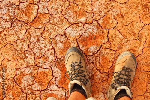 Fotografie, Obraz  Desert