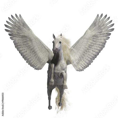 White Pegasus on White - Pegasus is a legendary divine winged stallion and is the best known creature of Greek mythology Fototapeta