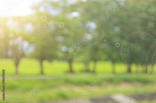 Fotografie, Obraz  Blur nature green park abstract background.