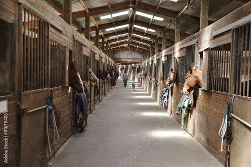 Animals: Empty barn with a no smoking sign