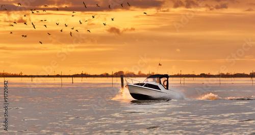 motoscafo e gabbiani alla laguna del delta del po Fototapeta