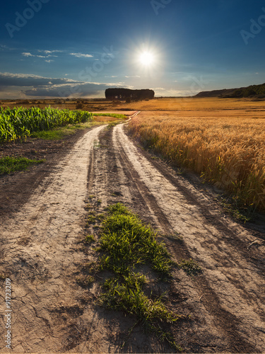 Tuinposter Purper Driving on an empty dirt road at sunset