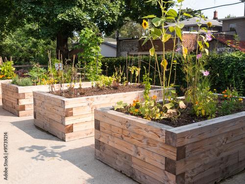 Papiers peints Jardin Community Garden