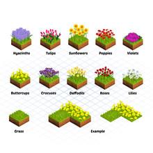 Set Of Isometric Tiles Flowers...