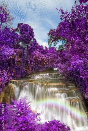 purple leaves at Huay mae khamin waterfalls - 91805611