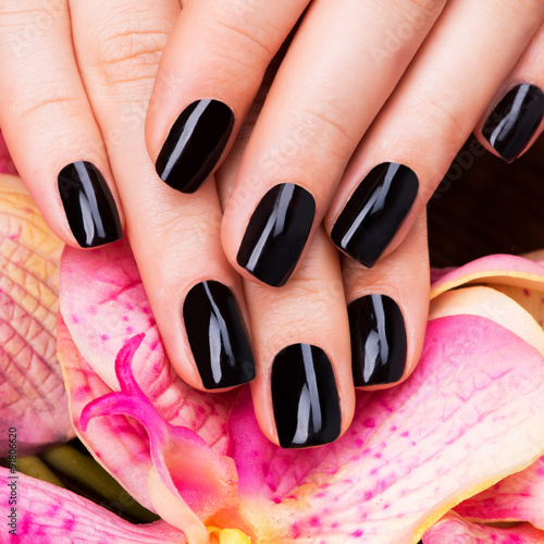 Beautiful women hands with black manicure плакат