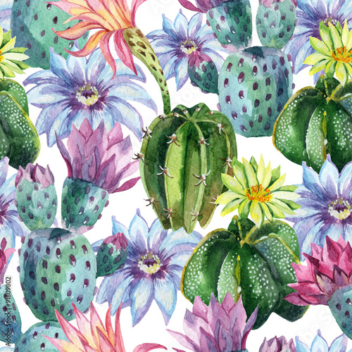 Poster Watercolor Nature Watercolor seamless cactus pattern