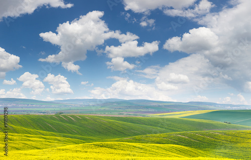 Foto op Canvas Bleke violet Landscape of yellow - green fields on the hills, blue sky
