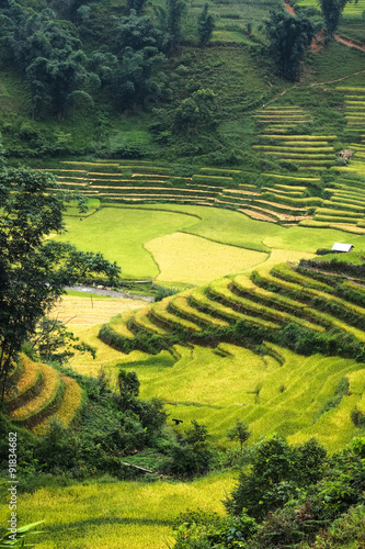 Staande foto Guilin Rice fields on terraced of Mu Cang Chai, YenBai, Vietnam. Rice fields prepare the harvest at Northwest Vietnam.