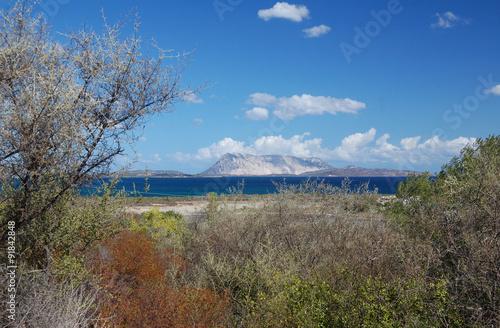 Photo  Isola di Tavolara da San Teodoro