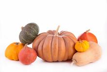 Assorted Pumpkin