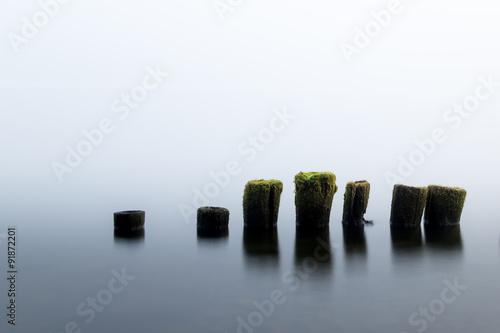 Fotografía  Lo simple es hermoso