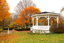 White Gazebo And Autumn Trees In The Park