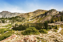 Cecret Lake At Albion Basin Of...