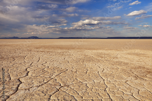 Staande foto Droogte Cracked earth in remote Alvord Desert, Oregon, USA