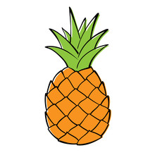 Single Pineapple On White Background. Vector Graphics.