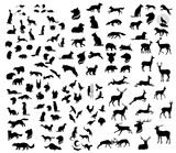 The big set of forest vector animals silhouettes.
