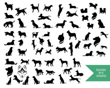 The Big Set Of Dog Breeds Silh...