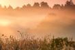 Misty morning landscape of Pomerania, Poland