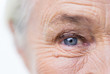 canvas print picture - close up of senior woman face and eye