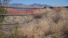 Tumbleweeds And Fence Zoom Shot