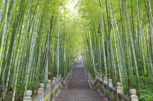 Poster Bambou Scenic mountaineer step stairs next to the bamboo forest