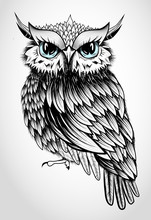 Owl Lady - Beautiful Vector Illustration