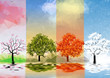 Four Seasons Banners with Trees and Lake Reflection - Vector Illustration