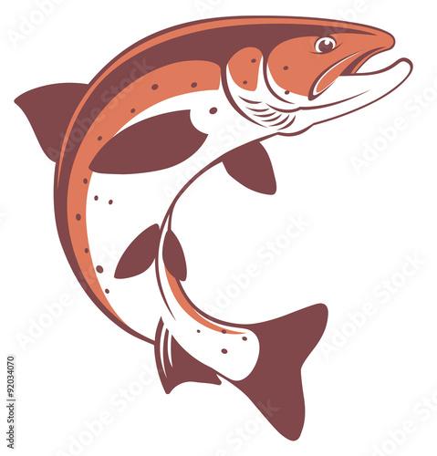 Fotografia trout