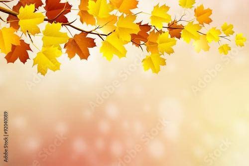 Fototapeta autumn in blurry circle glowing bokeh background obraz na płótnie