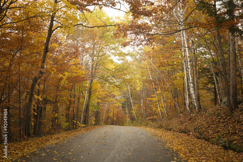 Fotografia, Obraz  Vermont Road in Autumn