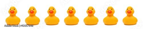 Valokuva  Rubber Ducky