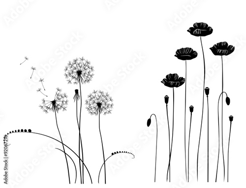 Collection for designers, wild plant vector - 92067216