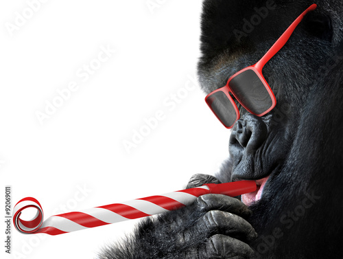 Fotografía  Funny gorilla with red sunglasses celebrating a party by blowing a striped horn