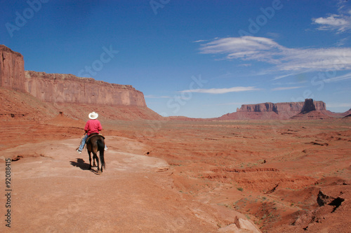 Poster de jardin Vache MONUMENT VALLEY - JOHN FORD'S POINT